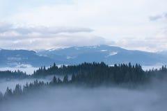 Τοπίο άνοιξη με την υδρονέφωση πρωινού στα βουνά στοκ φωτογραφία με δικαίωμα ελεύθερης χρήσης