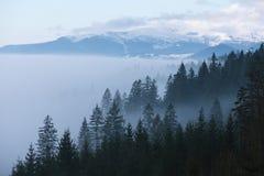 Τοπίο άνοιξη με την υδρονέφωση πρωινού στα βουνά στοκ φωτογραφίες με δικαίωμα ελεύθερης χρήσης