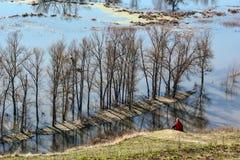 Τοπίο άνοιξη - πλημμύρα στην κοιλάδα ποταμών του Siverskyi Seversky Donets με τα απεικονισμένα δέντρα στο νερό Στοκ εικόνα με δικαίωμα ελεύθερης χρήσης