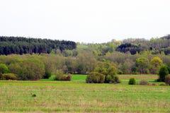 Τοπίο άνοιξη στην περιοχή Anyksciai στη Λιθουανία Στοκ Φωτογραφία