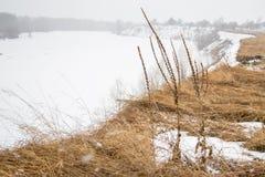 Τοπίο άνοιξη στη Σιβηρία στον ποταμό στοκ φωτογραφίες με δικαίωμα ελεύθερης χρήσης