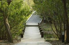 Μικρά γέφυρα και μονοπάτι στα ξύλα Στοκ εικόνες με δικαίωμα ελεύθερης χρήσης