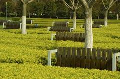 Καθίσματα στο θάμνο Στοκ Φωτογραφίες