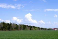 τοπίο αγροτική Ρωσία σανού δεμάτων Στοκ Εικόνες
