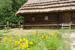τοπίο αγροτικό Στοκ Εικόνα