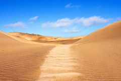 Τοπίο αμμόλοφων ερήμων Namib Στοκ Εικόνες