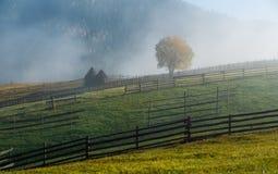 Τοπίο ανατολής φθινοπώρου Bucovina στη Ρουμανία με την υδρονέφωση και τα βουνά στοκ εικόνες με δικαίωμα ελεύθερης χρήσης