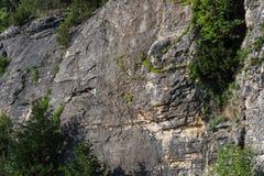 Τοπίο απότομων βράχων και δέντρων Ozark Στοκ Φωτογραφία