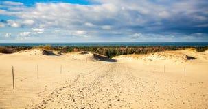 Τοπίο από τους γκρίζους αμμόλοφους Στοκ εικόνα με δικαίωμα ελεύθερης χρήσης
