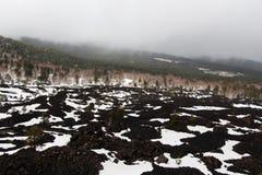 Τοπίο από etna το ηφαίστειο, με τα ξύλα στοκ φωτογραφίες με δικαίωμα ελεύθερης χρήσης