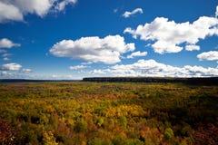 Τοπίο δασικών δέντρων πτώσης φθινοπώρου απότομων βράχων Croker ακρωτηρίων Στοκ εικόνα με δικαίωμα ελεύθερης χρήσης