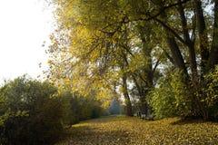 Τοπίο Βέλγιο φθινοπώρου στοκ εικόνα με δικαίωμα ελεύθερης χρήσης