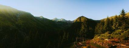 Τοπίο, βουνά και δασικό υπόβαθρο Στοκ Εικόνα