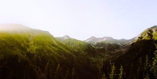 Τοπίο, βουνά και δασικό υπόβαθρο Στοκ φωτογραφίες με δικαίωμα ελεύθερης χρήσης