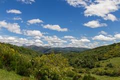Τοπίο βουνών με τα δάση, τη βλάστηση και το σαφή μπλε ουρανό Στοκ Φωτογραφίες