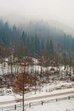 Τοπίο βουνών με τα κομψά δασικά και παραδοσιακά σπίτια σε μια ομίχλη Στοκ Φωτογραφία