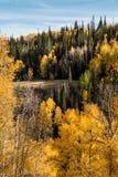 Τοπίο βουνών με τα χρώματα φθινοπώρου Στοκ Εικόνες
