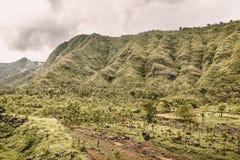 Τοπίο βουνών με το νεφελώδη ουρανό, αιχμές βουνών Μπαλί Ινδονησία Στοκ Φωτογραφίες