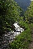 Τοπίο βουνών ροής ποταμών την άνοιξη στοκ εικόνα με δικαίωμα ελεύθερης χρήσης