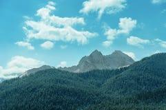 Τοπίο βουνών σε Arkhyz Στοκ φωτογραφία με δικαίωμα ελεύθερης χρήσης