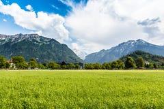 Τοπίο βουνών στο Ίντερλεικεν, Ελβετία Στοκ Εικόνες