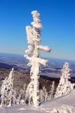 Τοπίο βουνών το χειμώνα Στοκ φωτογραφία με δικαίωμα ελεύθερης χρήσης