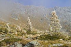 Τοπίο βουνών φθινοπώρου Στοκ Εικόνα