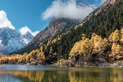 Τοπίο βουνών χιονιού στα τέλη του φθινοπώρου στη φυσική περιοχή κοιλάδων bipeng, Sichuan στοκ εικόνες