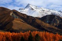 τοπίο βουνών στοκ εικόνες