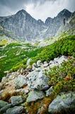 Τοπίο βουνών Tatra Στοκ Εικόνες