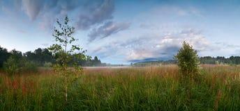 Τοπίο βραδιού σε άγρια περιοχές Στοκ Φωτογραφία