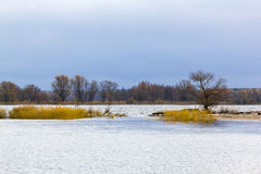 Τοπίο γύρω από τις εκβολές του ποταμού Vistula στη θάλασσα της Βαλτικής, Πολωνία στοκ φωτογραφία με δικαίωμα ελεύθερης χρήσης