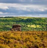 Τοπίο ενός σχηματισμού βράχου σε τρία στρώματα της χλόης, δέντρα στοκ εικόνες με δικαίωμα ελεύθερης χρήσης