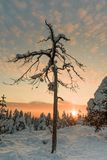 Τοπίο επάνω στο λόφο στο Ροβανιέμι - τη Σκωτία στοκ εικόνα με δικαίωμα ελεύθερης χρήσης