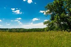 τοπίο επαρχίας αγροτικό Στοκ Εικόνες