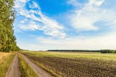 Τοπίο επαρχίας Τομέας με την αφαιρούμενη συγκομισμένη συγκομιδή κάτω από το μπλε ουρανό δρόμος πεδίων ρύπου χωρών στοκ εικόνες