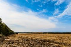 Τοπίο επαρχίας Τομέας με την αφαιρούμενη συγκομισμένη συγκομιδή κάτω από το μπλε ουρανό στοκ φωτογραφία με δικαίωμα ελεύθερης χρήσης