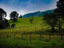 Τοπίο επαρχίας στοκ φωτογραφίες με δικαίωμα ελεύθερης χρήσης