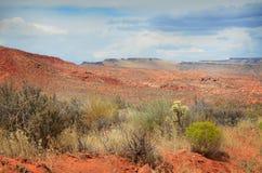 Τοπίο ερήμων στοκ φωτογραφίες με δικαίωμα ελεύθερης χρήσης