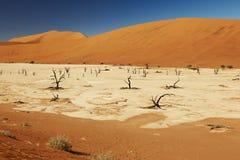 Τοπίο ερήμων Namib σε Deadvlei Στοκ Φωτογραφία