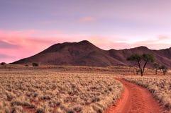 Τοπίο ερήμων - NamibRand, Ναμίμπια στοκ φωτογραφίες