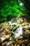 Τοπίο ζουγκλών με το ρέοντας τυρκουάζ νερό του της Γεωργίας καταρράκτη καταρρακτών βαθιά - πράσινο δασικό βουνό της Γεωργίας Στοκ φωτογραφίες με δικαίωμα ελεύθερης χρήσης