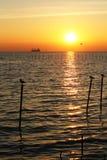 Τοπίο ηλιοβασιλέματος Στοκ Εικόνες