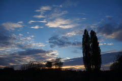 Τοπίο, ηλιόλουστη αυγή σε έναν τομέα Στοκ φωτογραφία με δικαίωμα ελεύθερης χρήσης