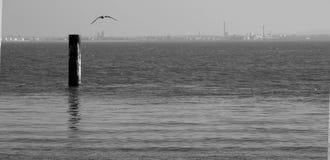 Τοπίο θάλασσας της Λισσαβώνας Στοκ Εικόνα