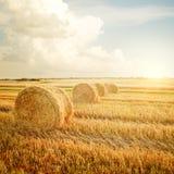 Τοπίο θερινών αγροκτημάτων με τη θυμωνιά χόρτου Στοκ Φωτογραφία