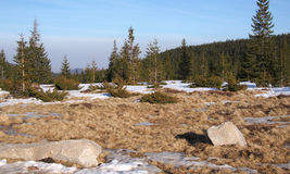 Τοπίο θερινών βουνών με το χιόνι Στοκ φωτογραφία με δικαίωμα ελεύθερης χρήσης