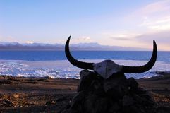 τοπίο Θιβέτ Στοκ φωτογραφία με δικαίωμα ελεύθερης χρήσης