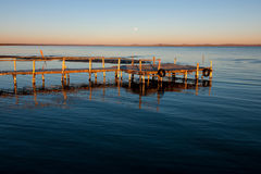 Τοπίο λιμνών κλάδων Στοκ εικόνα με δικαίωμα ελεύθερης χρήσης