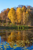 Τοπίο λιμνών το φθινόπωρο Στοκ εικόνες με δικαίωμα ελεύθερης χρήσης